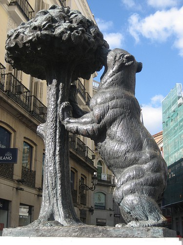 oso-y-madrono_ciudaddelosangeles