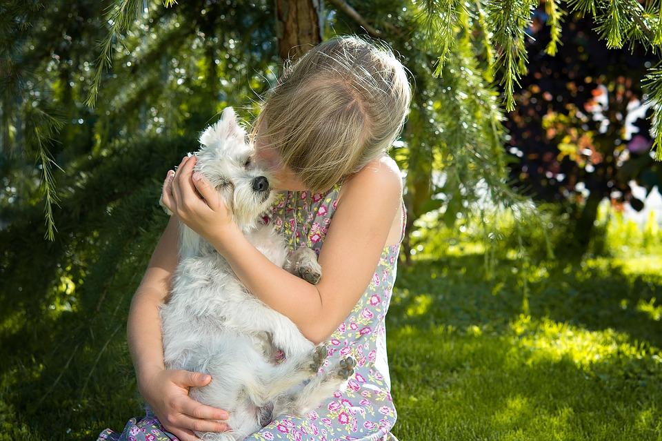 niña besando a perro