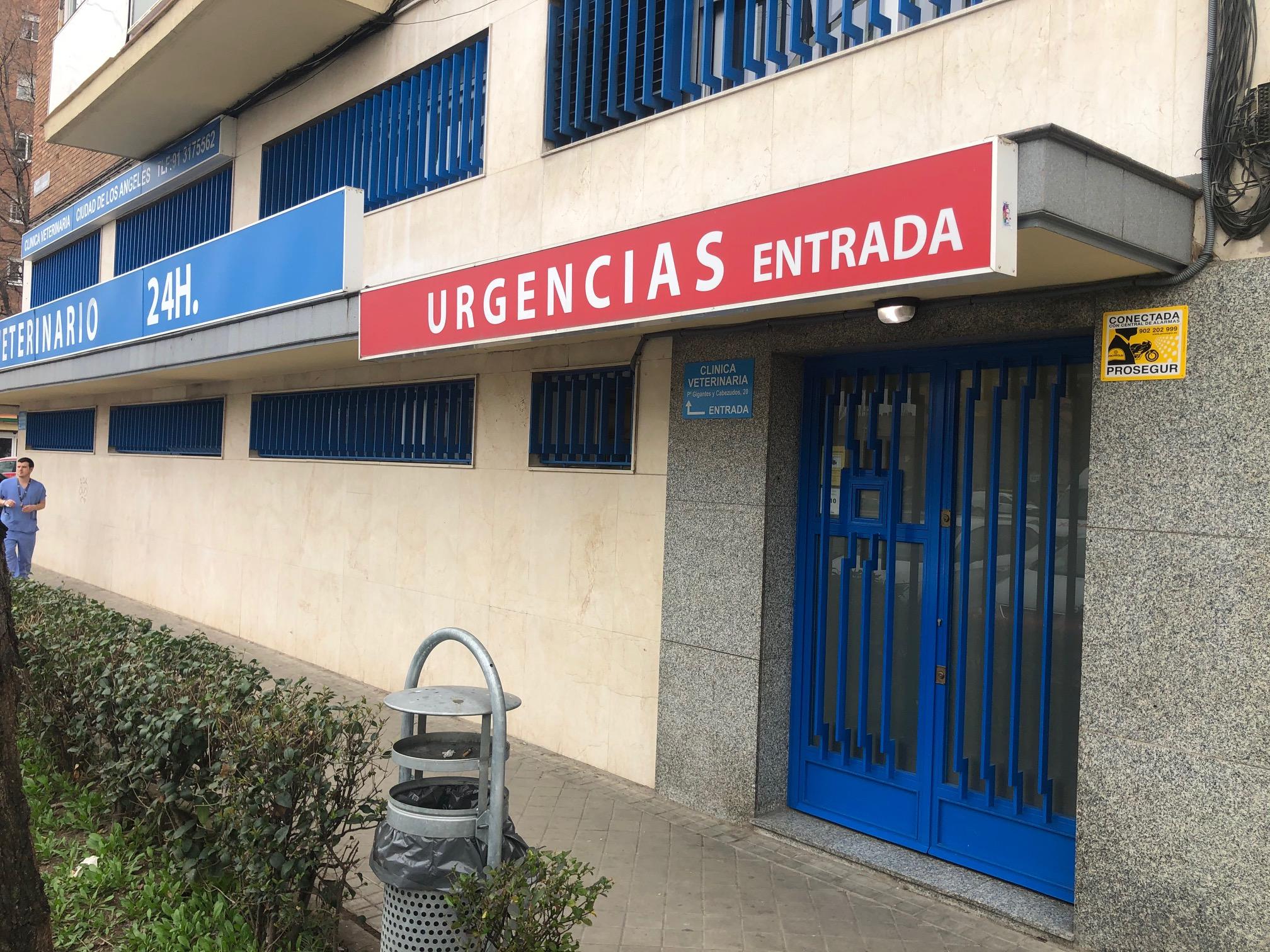 Entrada Urgencias. Veterinario 24 horas Madrid